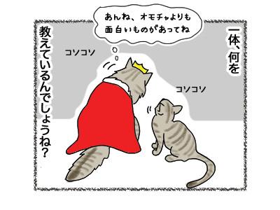 17052018_cat3.jpg
