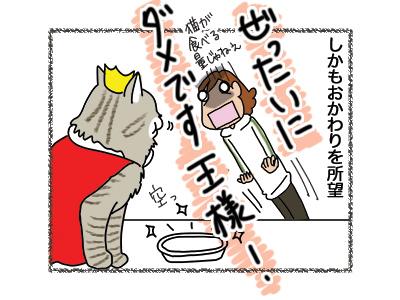 18042018_cat4.jpg