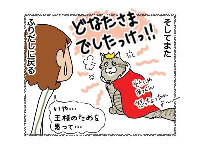 18042018_cat5.jpg