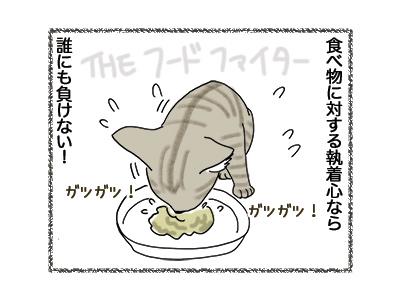 18052018_cat2.jpg
