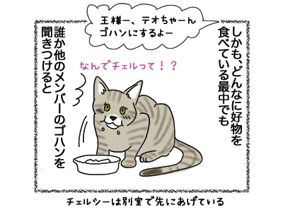 18052018_cat3.jpg