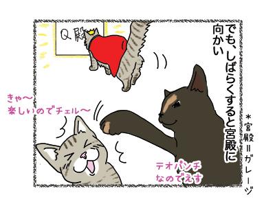 18062018_cat2mini.jpg
