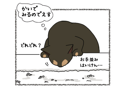 19062018_cat2.jpg