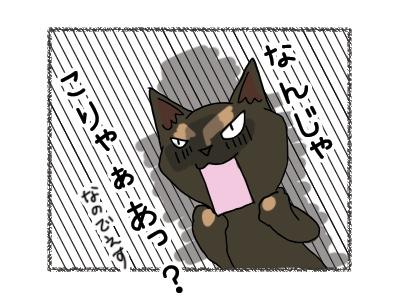 19062018_cat3.jpg