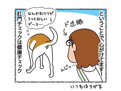 20042018_cat1.jpg