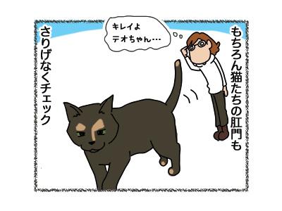20042018_cat2.jpg