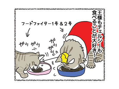 20062018_cat1.jpg