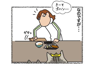20062018_cat2.jpg