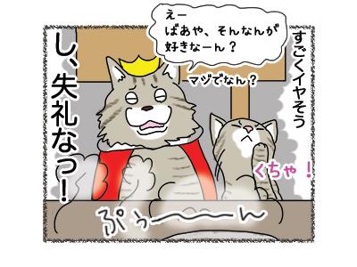 20062018_cat4.jpg