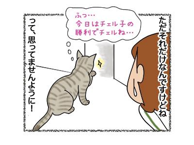 22052018_cat5.jpg