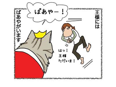 22062018_cat1.jpg