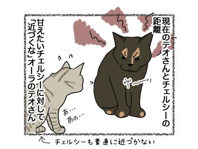 24042017_cat1.jpg