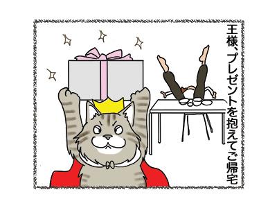 24052018_cat2.jpg