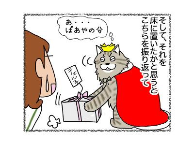 24052018_cat3.jpg