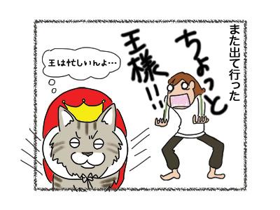 24052018_cat4.jpg