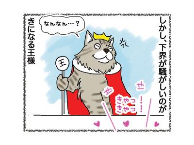 29052018_cat2.jpg