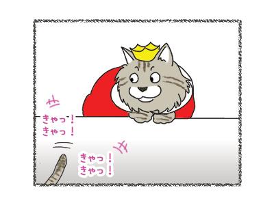 29062018_cat2.jpg