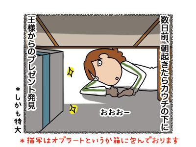 30042018_cat1.jpg