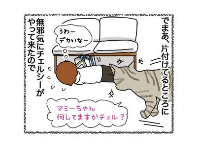 30042018_cat2.jpg