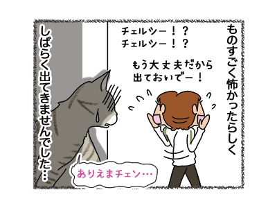30042018_cat4.jpg