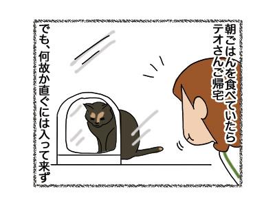 30052018_cat1.jpg
