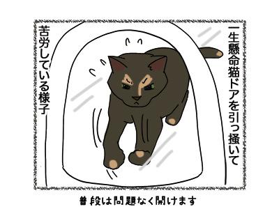 30052018_cat2.jpg