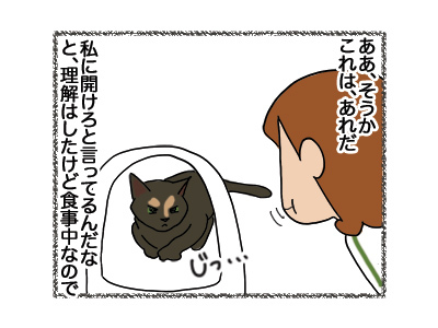 30052018_cat3.jpg