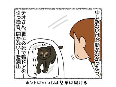 30052018_cat4.jpg