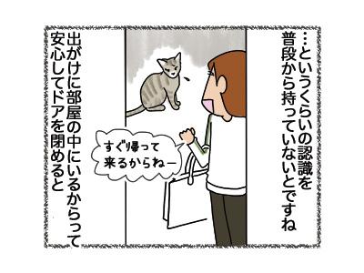 31052018_cat3.jpg