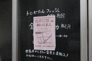 20180406中崎_MG_3960