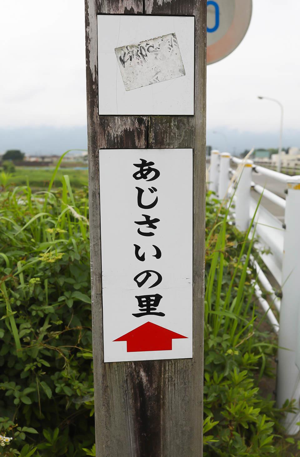 開成あじさい祭り.jpg