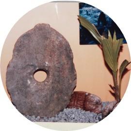 10-① 石貨 (1)