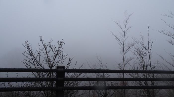 熊本観光 (12)