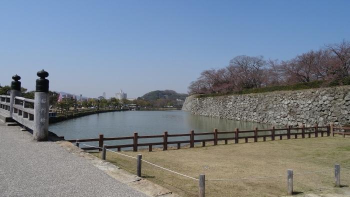 姫路城と桜 (2)