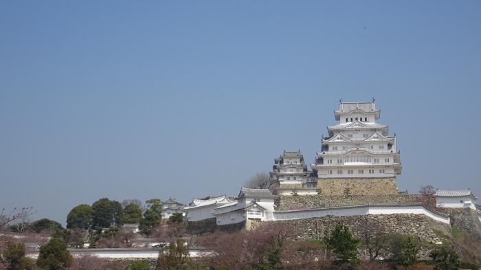 姫路城と桜 (3)