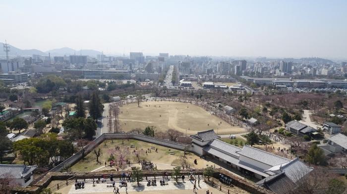 姫路城と桜 (7)