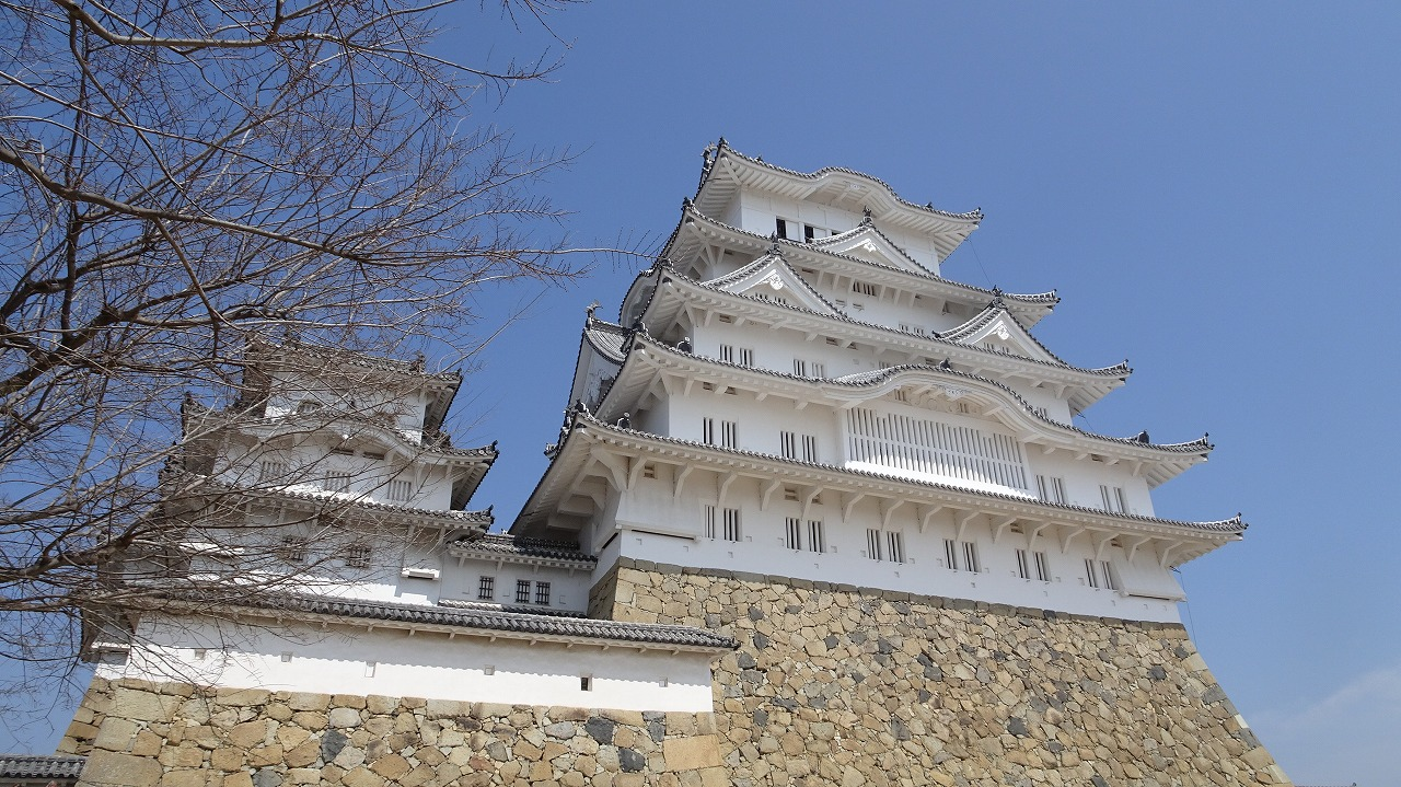 姫路城と養老公園の桜 (2018年3月)