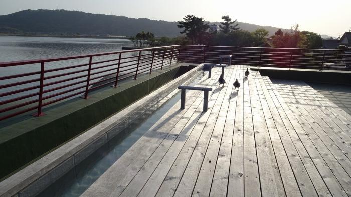 望湖楼風呂 (19)