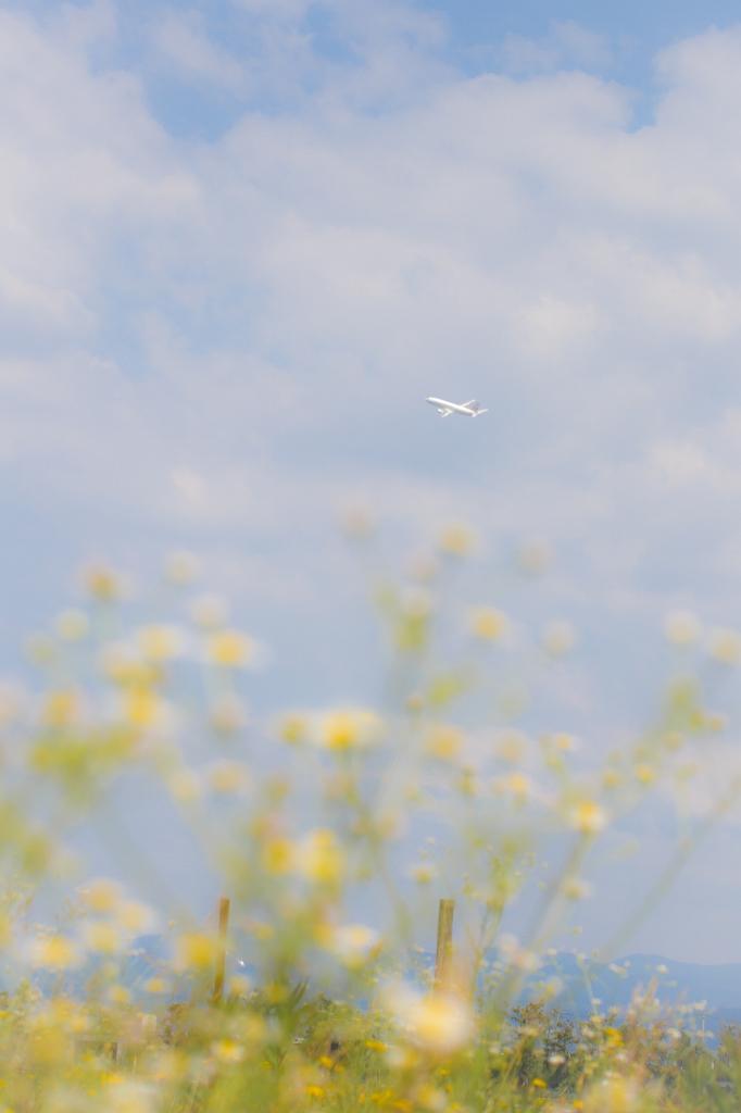 小松空港_H30_6_3