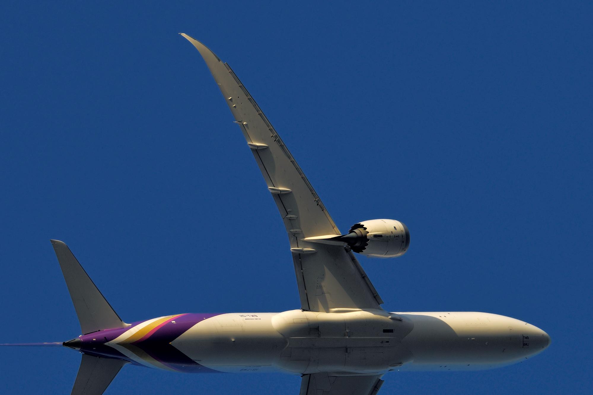 787の翼