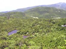 山の朝通信-山頂付近より七つ池を望む