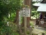 唐松神社29