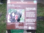 湯沢中央公園04