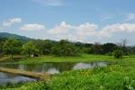 水田と飯豊連峰 (福島県喜多方市・旧山都町