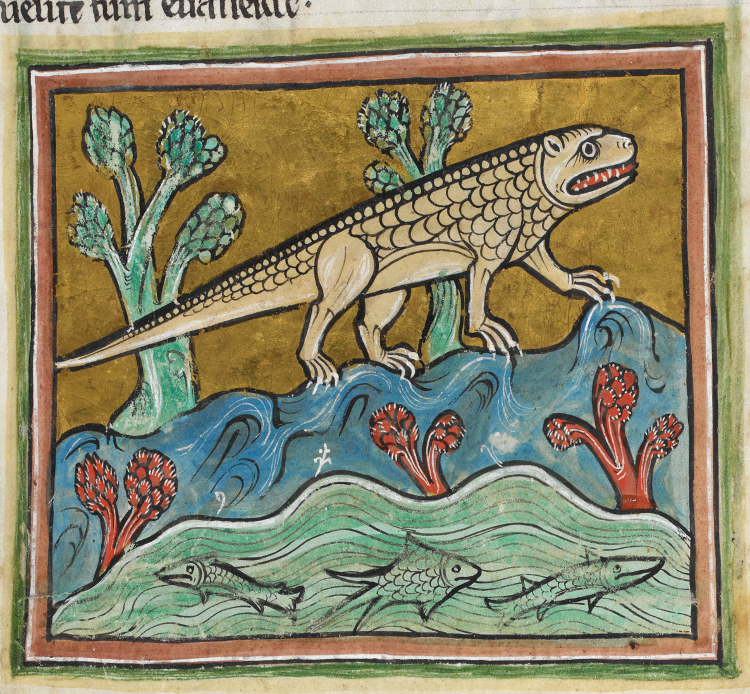 ロチェスター動物寓意譚Crocodile_-_British_Library_Royal_12_F_xiii_f24r_(detail)