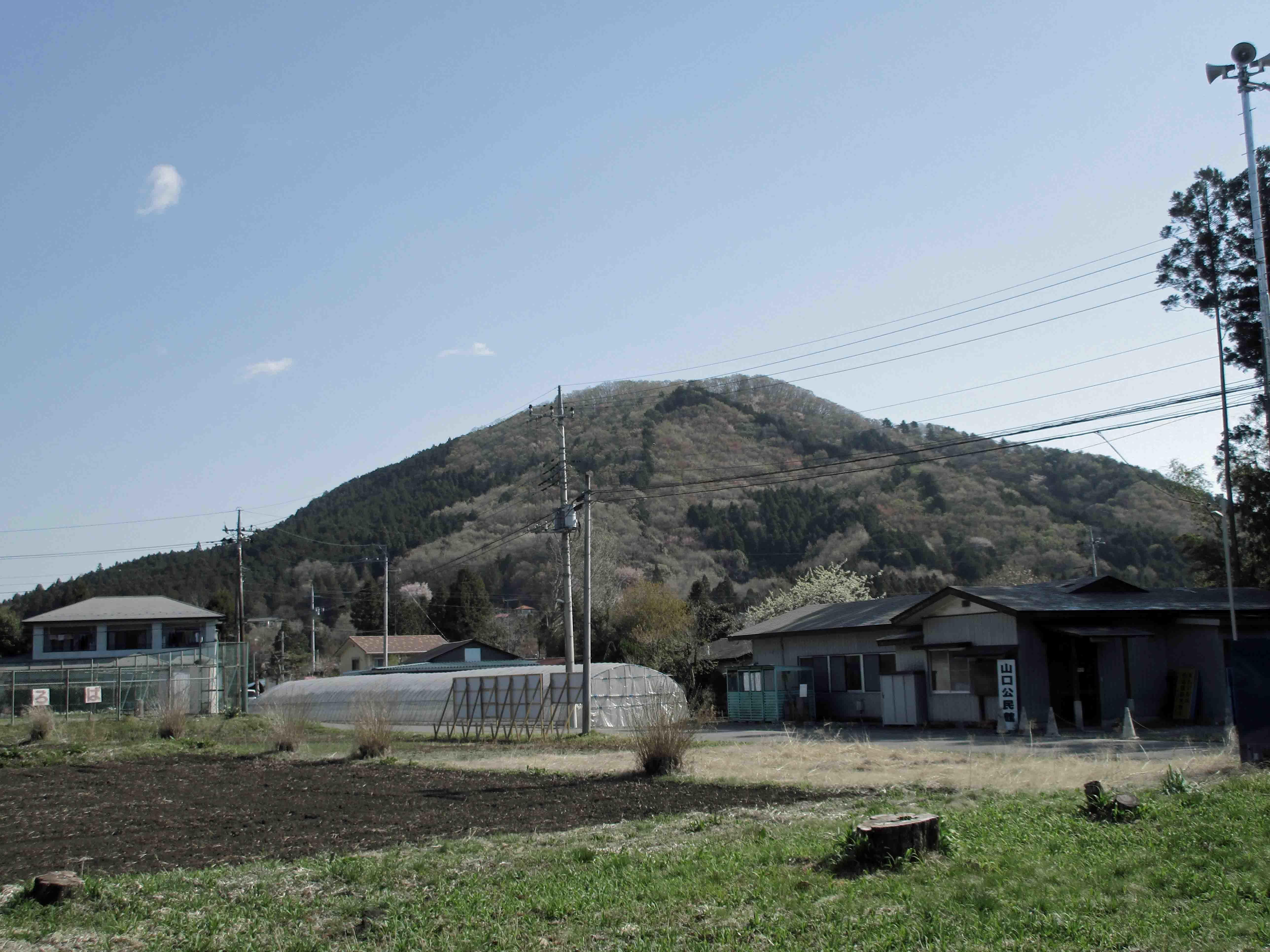 寅巳城 遠景