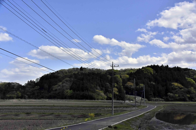森田城 遠景