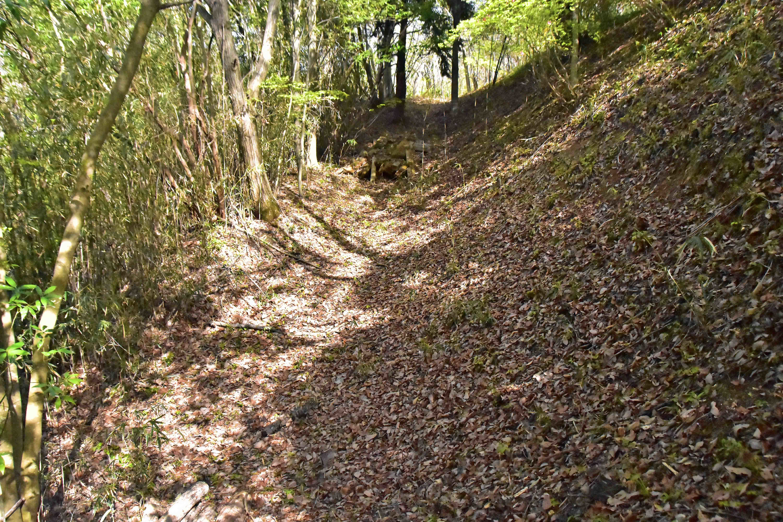 小志鳥 西側の堀