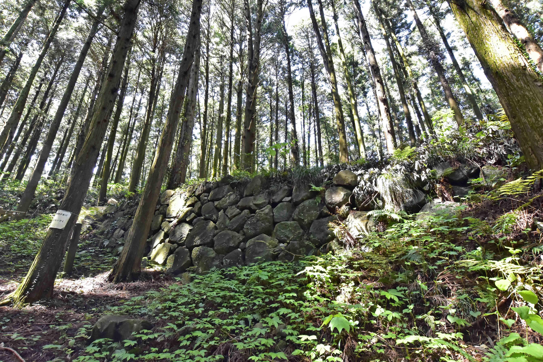 塩倉跡側面の石垣