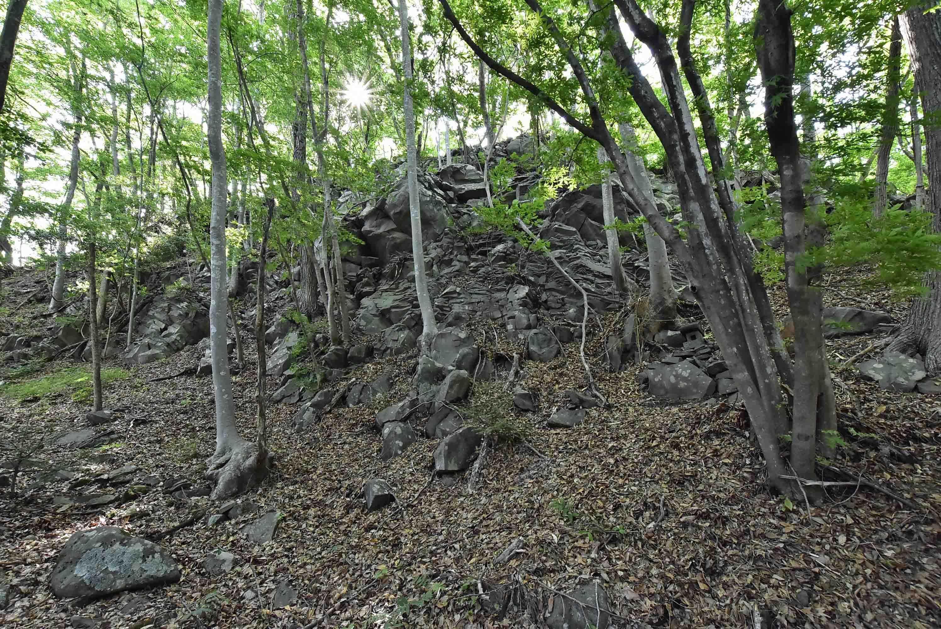 _DSC4112獅子吼 自然石と石積が混在